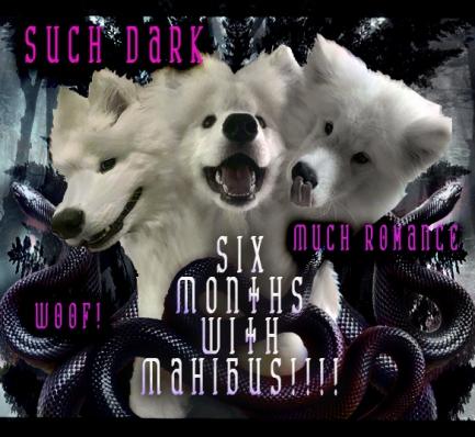 Mahibus3